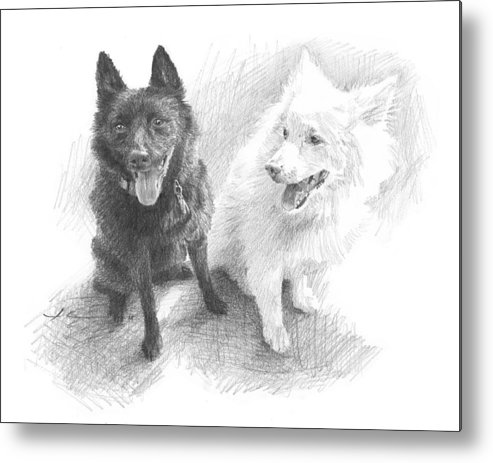 Www.miketheuer.com Black Dog White Dog Drawing Metal Print featuring the drawing Black Dog White Dog Drawing by Mike Theuer