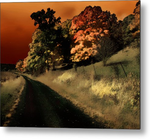 Road Metal Print featuring the photograph Coles County by Jim Painter