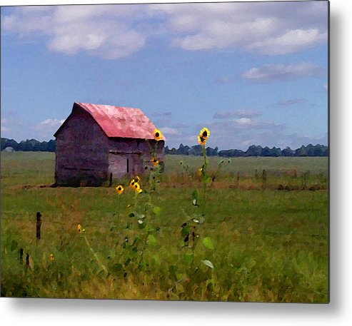Landscape Metal Print featuring the photograph Kansas Landscape by Steve Karol