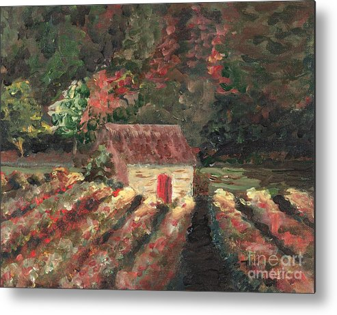 Landscape Metal Print featuring the painting Provence Vineyard by Nadine Rippelmeyer