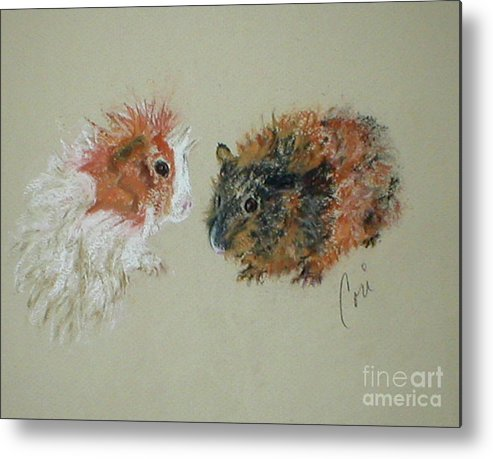 Guineas Metal Print featuring the drawing Two Guineas by Cori Solomon