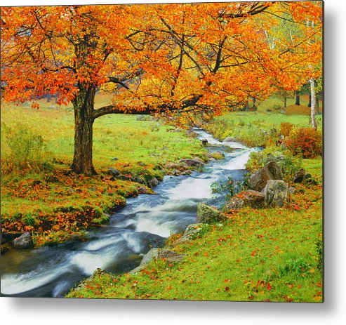 Scenics Metal Print featuring the photograph Autumn In Vermont G by Ron thomas