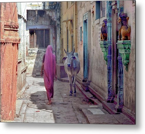 Horned Metal Print featuring the photograph India Lady And Cow by Glenn Losack