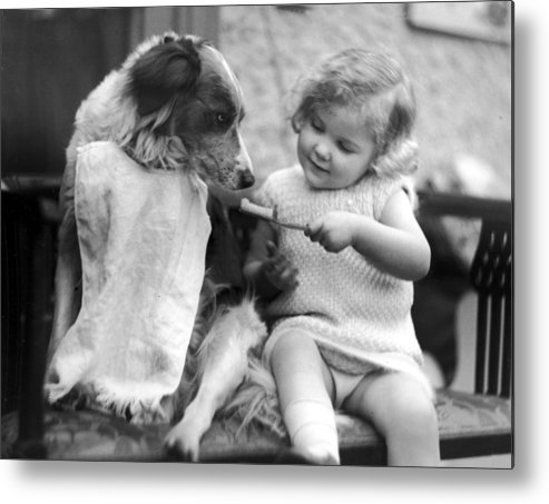 Toddler Metal Print featuring the photograph Toddler Trying To Brush Dogs Teeth. P by Time Life Pictures