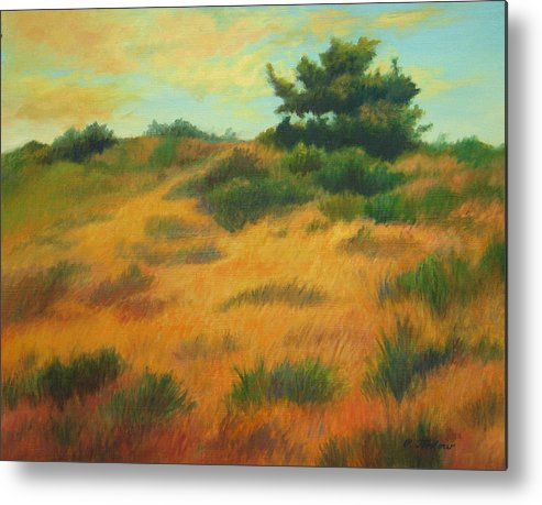 Cape Cod Scene Metal Print featuring the painting Province Lands Cape Cod by Phyllis Tarlow