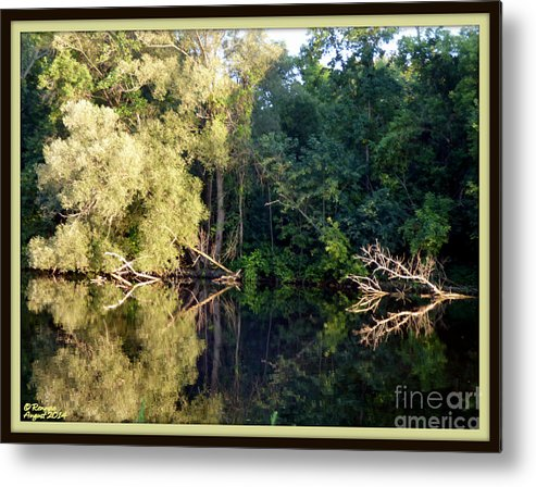 Nature Metal Print featuring the photograph Afternoon Reflections by Rennae Christman