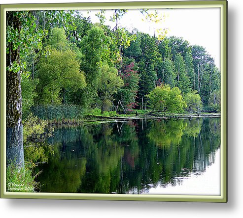 Landscape Metal Print featuring the photograph Almost Fall by Rennae Christman