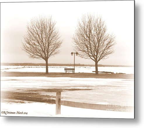 Winter Metal Print featuring the photograph Anticipating Spring by Rennae Christman