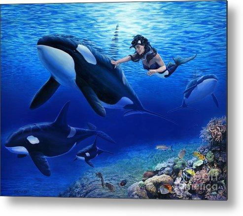 Mermaid Metal Print featuring the painting Aquaria's Orcas by Stu Shepherd