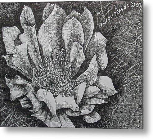 Flowers Metal Print featuring the drawing Cactus Flower by Denis Gloudeman