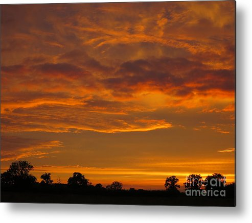 Sunset Metal Print featuring the photograph Fire In The Sky by Ann Horn