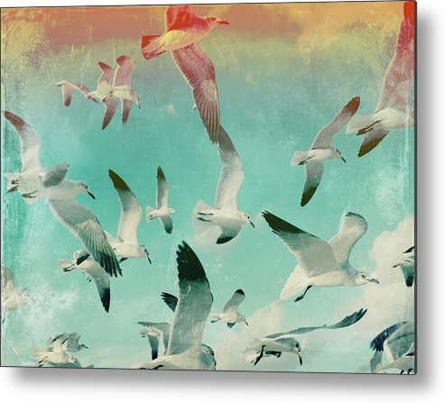 Animal Themes Metal Print featuring the photograph Flock Of Seagulls, Miami Beach by Michael Sugrue