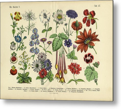 Lantana Metal Print featuring the digital art Flowers Of The Garden, Victorian by Bauhaus1000