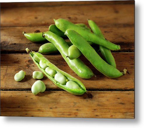 Healthy Eating Metal Print featuring the photograph Fresh Broad Beans In Their Pods by Paul Williams - Funkystock