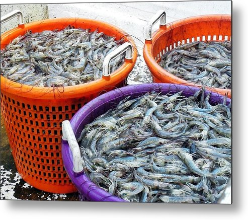 Shrimp Metal Print featuring the photograph Loaves And Fishes by Patricia Greer