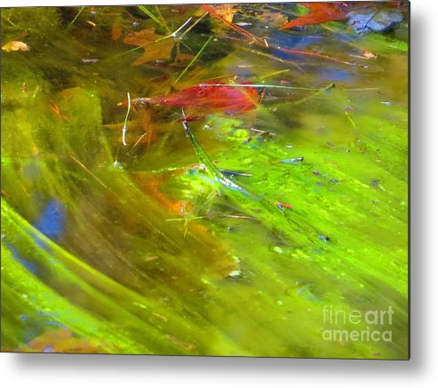 Photography Metal Print featuring the photograph Mothers abstract 05 by Rrrose Pix