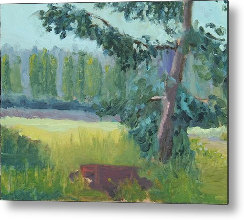 Metal Print featuring the painting Olympic Nursery view by Raymond Kaler