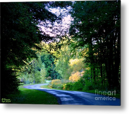 Countryside Metal Print featuring the photograph Peaceful Afternoon by Rennae Christman