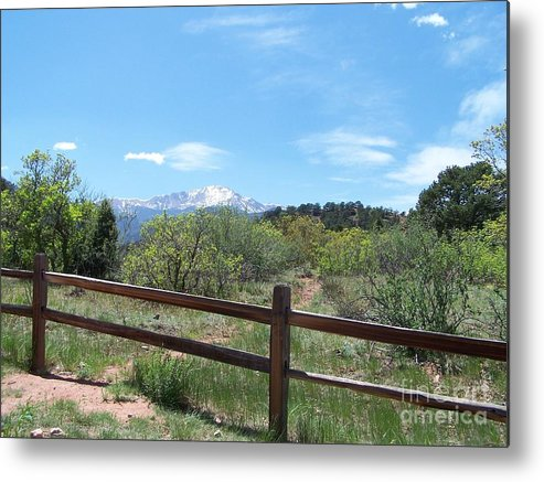 Colorado Metal Print featuring the photograph Crossing the Fence by Jack Norton