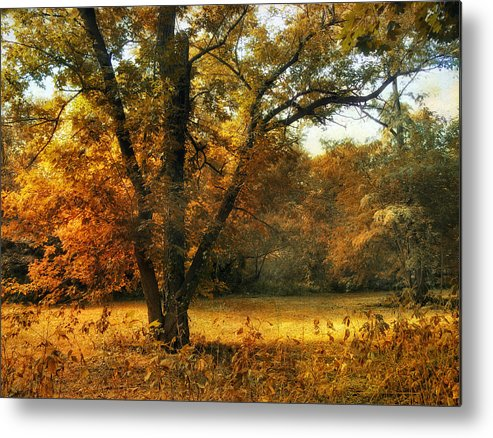 Autumn Metal Print featuring the photograph Autumn Arises by Jessica Jenney