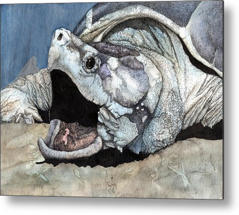Reptile Turtles Alligator Snapper Turtle Art Snapping Turtle Metal Print featuring the painting Alligator Snapping Turtle by Preston Shupp