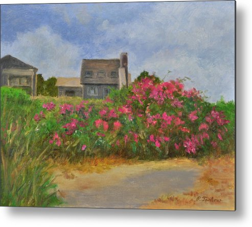 Landscape Metal Print featuring the painting Beach Roses and Cottages by Phyllis Tarlow