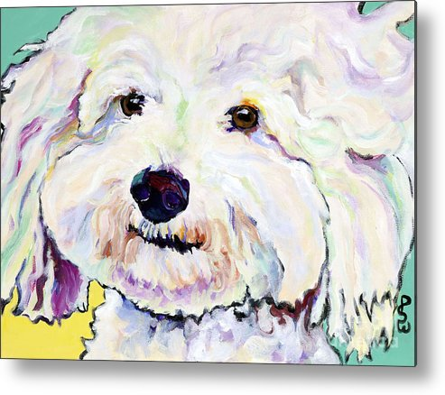 Bischon Metal Print featuring the painting Buttons  by Pat Saunders-White
