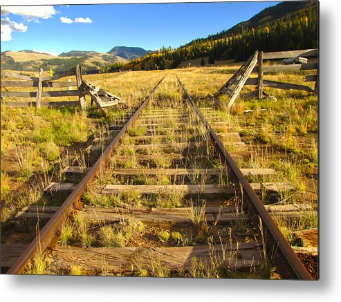 Train Metal Print featuring the photograph Cattle Track Guard by Carol Milisen