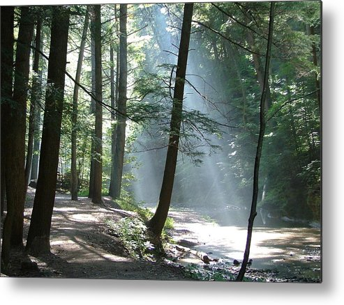 Photo Metal Print featuring the photograph Cedar Falls by Mindy Newman