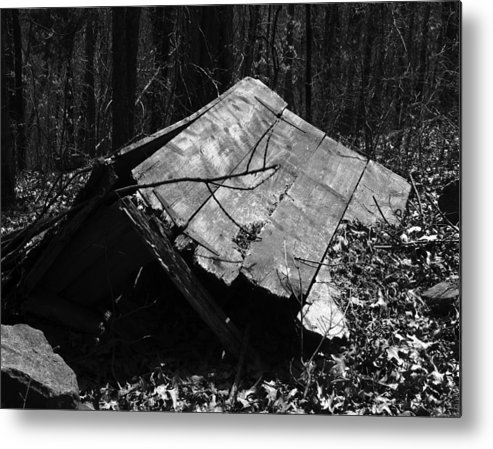 Ansel Adams Metal Print featuring the photograph Cindy Outhouse by Curtis J Neeley Jr