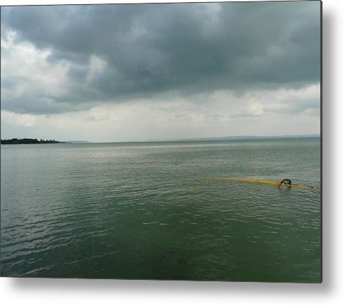 Lake Metal Print featuring the photograph Coming up for Air by Attila Balazs