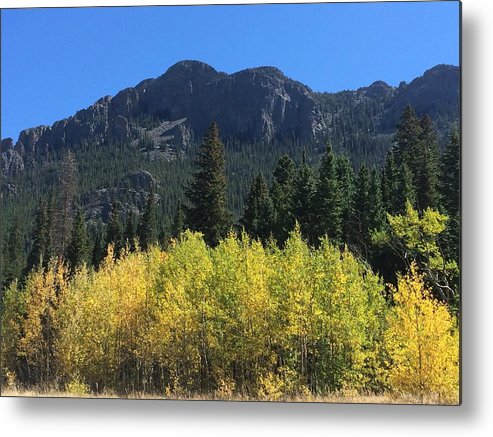 Landscape Metal Print featuring the photograph Fall at Twin Sisters by Kristen Anna