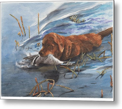 Www.miketheuer.com Golden Retriever With Duck Watercolor Portrait Metal Print featuring the drawing Golden Retriever With Duck by Mike Theuer