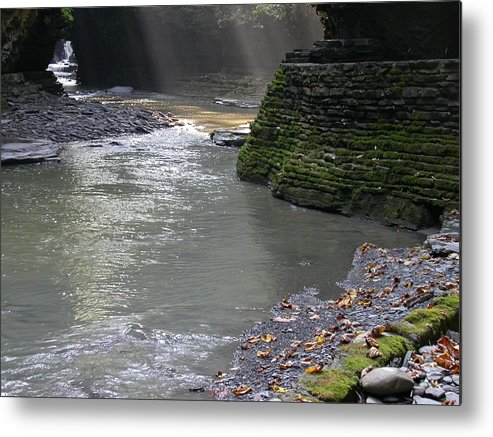 Watkins Glen Metal Print featuring the photograph Little Ray of Sunshine by Linda Murphy