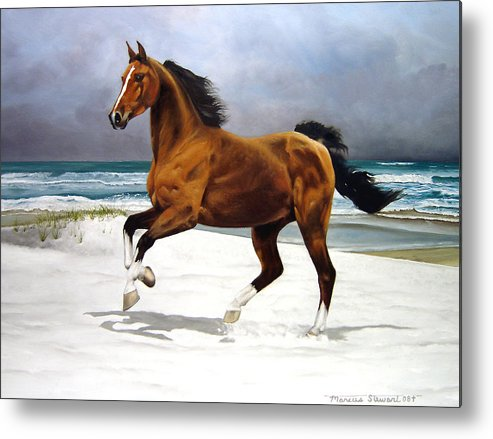 Horse Metal Print featuring the painting On The Beach by Marc Stewart