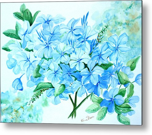 Floral Blue Painting Plumbago Painting Flower Painting Botanical Painting Bloom Blue Painting Metal Print featuring the painting Plumbago by Karin Dawn Kelshall- Best