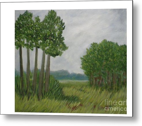 Florida Prairie Metal Print featuring the painting River Of Grass by Hal Newhouser