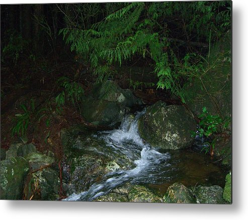 Water Metal Print featuring the photograph Secret Water by Jim Thomson