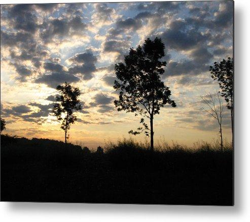 Landscape Metal Print featuring the photograph Silhouette by Rhonda Barrett