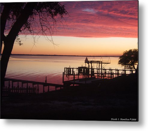 Silhouette Metal Print featuring the photograph Silhouettes by Nicole I Hamilton