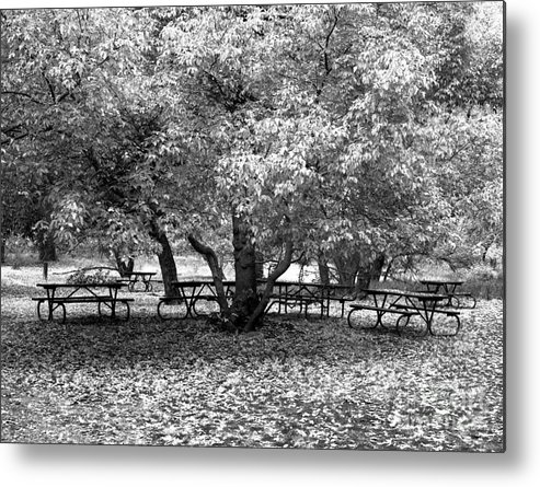 Cslanec Metal Print featuring the photograph Tables And Tree by Christian Slanec