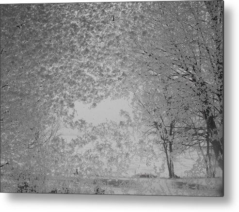 Landscape Metal Print featuring the photograph The Clearing by John Kuti
