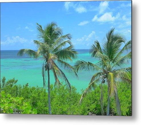Landscape Metal Print featuring the photograph Tropical Splendor by Florene Welebny