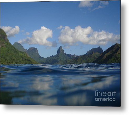 Landscape Metal Print featuring the photograph Turtle View of Paradise by Chad Natti