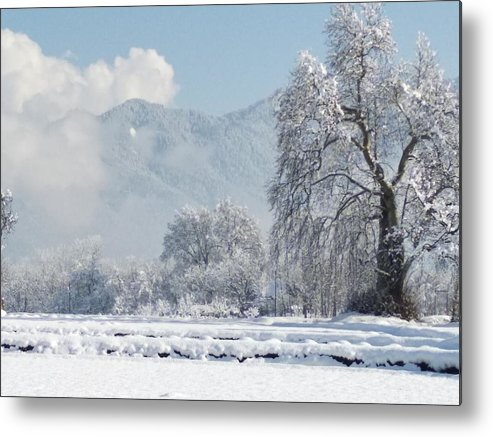 Metal Print featuring the photograph The Snow Story by Jacob
