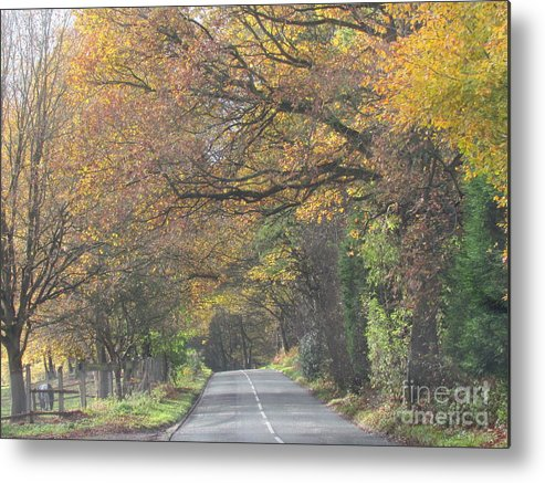 Trees Metal Print featuring the photograph Beautiful Drive . by Joyce Woodhouse