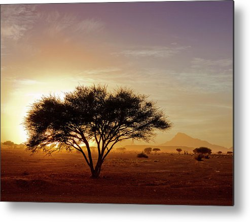 Tranquility Metal Print featuring the photograph Burning Desert by Bernd Schunack
