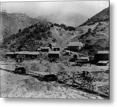Gold Rush Metal Print featuring the photograph Gold Rush by E. P. Vollum