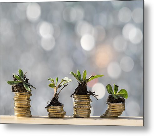 New Business Metal Print featuring the photograph Heaps of coins of Euro with green natural plants it they are born, illuminated by the light of the sun by Jose A. Bernat Bacete
