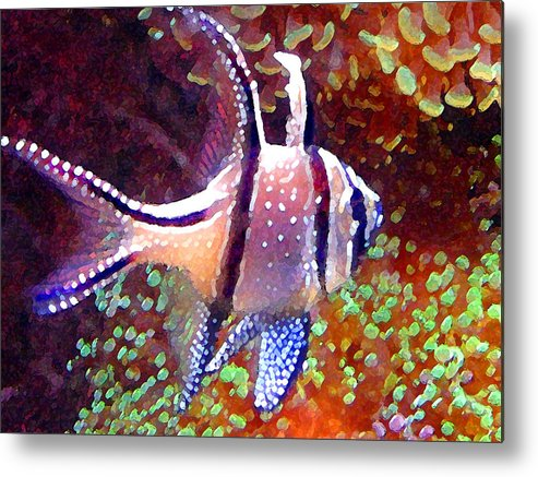 Fish Metal Print featuring the painting Banggai Cardinalfish by Amy Vangsgard